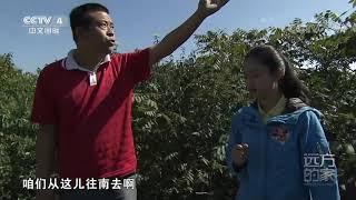 [远方的家]世界遗产在中国 徒步箭扣 感受万里长城的雄奇险峻| CCTV中文国际