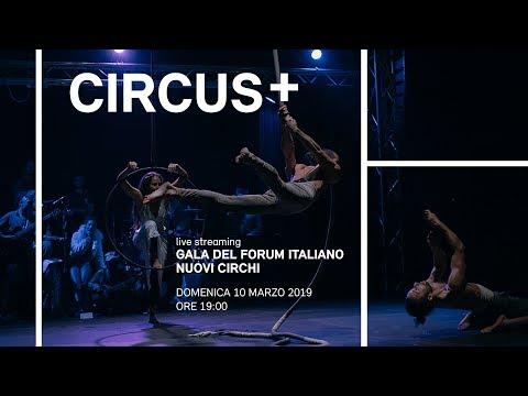 Circus +   Galà del forum italiano nuovi circhi