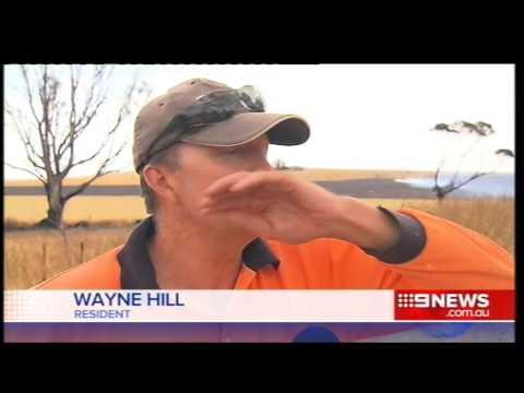 Nantawarra Bushfire | 9 News Adelaide