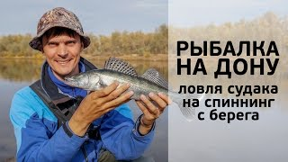 Рыбалка на Дону. Ловля судака на спиннинг с берега [FishMasta.ru]