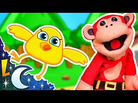 El Pollito Amarillito | El Mono Sílabo | Canciones Infantiles | Lunacreciente