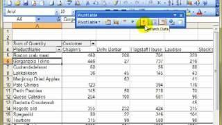 BIN 4411 Erstellen, ändern und aktualisieren von pivot-Tabellen Microsoft Excel 2003 ECDL Advanced ITQ3