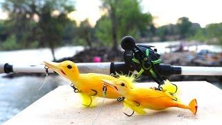 Duck Lure Challenge Redemption!!!!