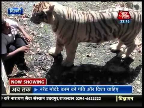 Delhi zoo case (Vardaat aajtak)