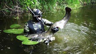 СОМ в НОРЕ Тактика поиска СОМА на реке Подводная охота