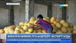 ОҚО диқандары шетелге 150 мың тоннадан астам қауын-қарбыз экспорттады