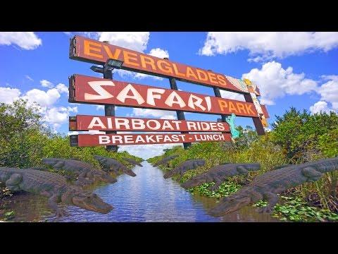 Everglades - Florida 4K