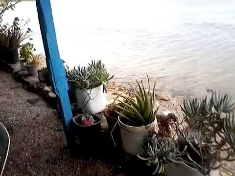 Guerrero Negro Baja California Sur Mexico