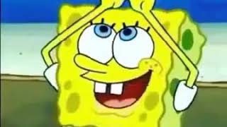 Download Video Spongebob bacot efek scene MP3 3GP MP4