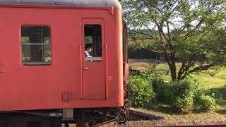 2019年5月2日いすみ鉄道  キハ52系(首都圏色)+キハ28系(急行色)国吉駅発車