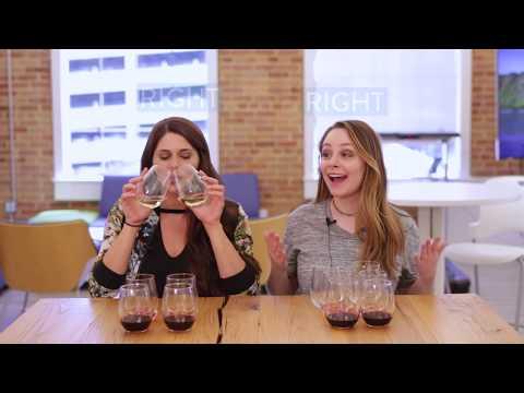 Cheap vs. Expensive Wine: Blind Wine Taste Test