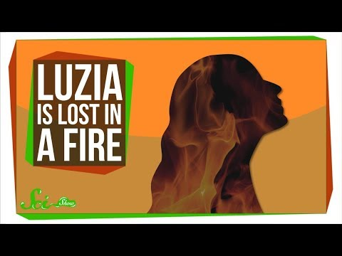 Luzia Among Specimens Likely Lost in Brazil Museum Fire | SciShow News