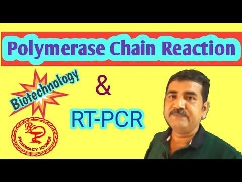 polymerase-chain-reaction---pcr