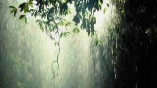 Relaxing Rain Music With Harp