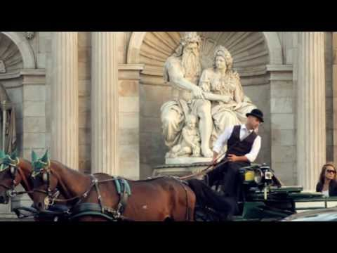 Horse-drawn Carriages In Vienna