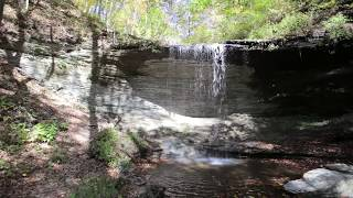 Discover the Natchez Trace