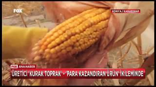 Obruk korkusuyla tarım