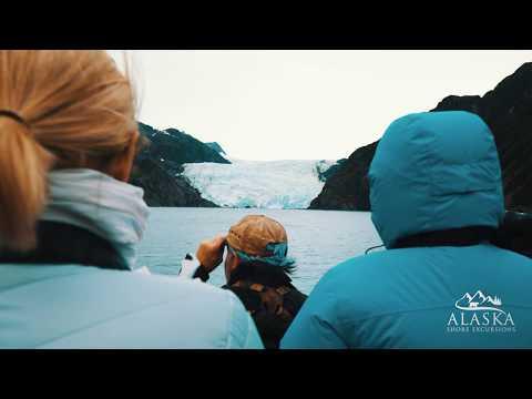 Kenai Fjords 7.5 Hours National Park Cruise - Seward, Alaska