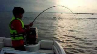 南米巨大魚スルビ釣り