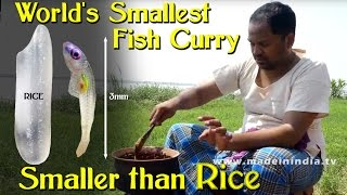 World's Smallest Fish Curry Making | Smaller Than Rice | SMALLEST AND COSTLIEST FISH | SHERAMENU