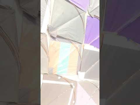 sharp kite senter in chowk subzi mandi allahabad 1 brother ke pass itni patang hai omg