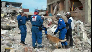 The Red Cross in the 2016 Ecuador earthquake: lessons learned