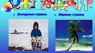 """Презентация для детского сада: """"Животные холодных и жарких стран"""""""