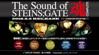 佐々木恵梨「GATE OF STEINER」(『STEINS;GATE 0』EDテーマ)フルサイ...