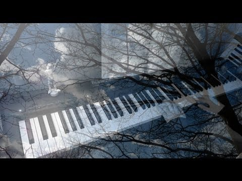 Two Trees by Ludovico Einaudi: In a Time Lapse (Piano Cover)