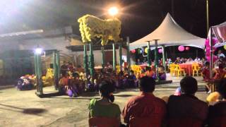Tuah Pek Kong Kota Belud Lion Dance 2014 ( YICK NAM TEAM KOTA BELUD )