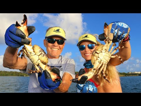 MY BIGGEST HAUL EVER! Harvesting Stone Crab Claws with Dad!