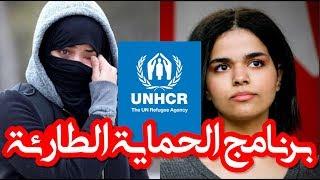 لماذا لم تحصل #ندى_اليمنية على حق #اللجوء في #كندا؟