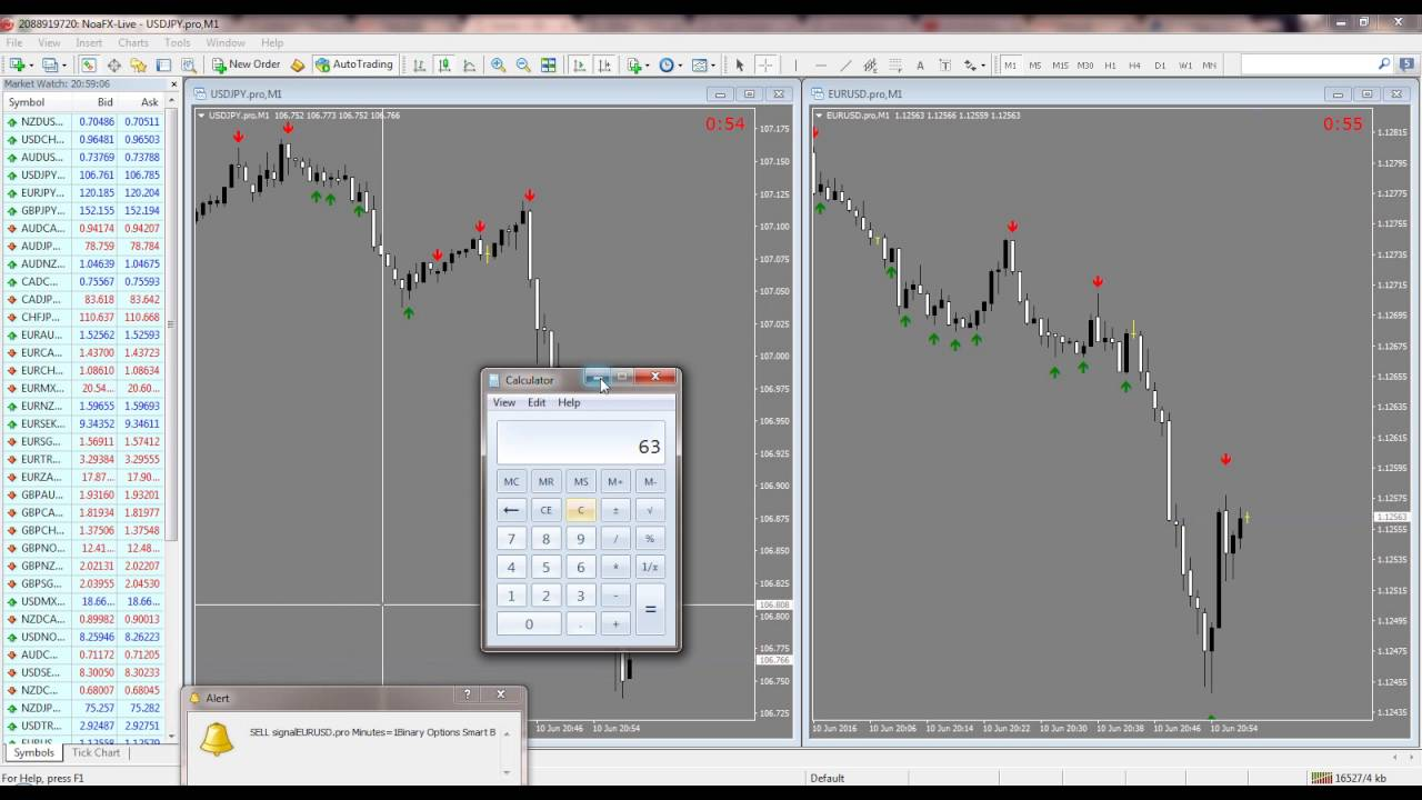 Binary options always win