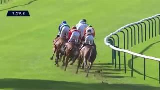Vidéo de la course PMU QATAR PRIX DE ROYALLIEU