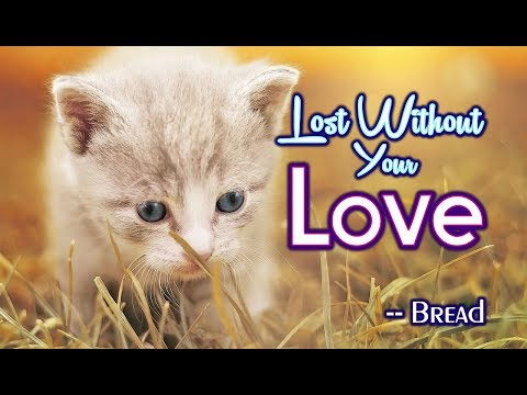 Lost Without Your Love - Bread (KARAOKE)