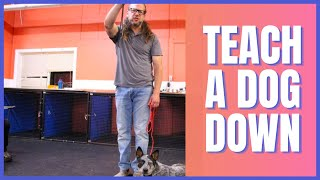 How To Teach a Dog Down - Solid K9 Training (2019)