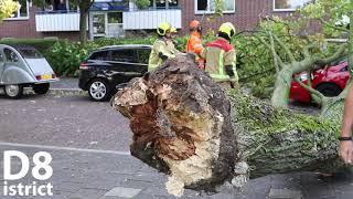20180921 Boom valt op geparkeerde auto's WHVanLeeuwenlaan Delft D8