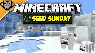 Minecraft 1.12.2 | Ice Spike Igloo Spawn | Seed Sunday - Ep250