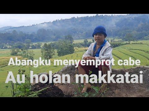 Download PAGI PAGI SIGAESS TANDIKA SUDAH MENGOCEH DARI DOLOK DOLOKOKE GAES