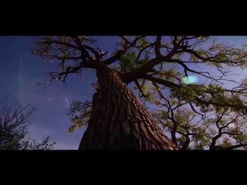 Ryan Soanes - Whole Again (Lyrics)