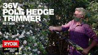 RYOBI Australia: Baz Tool Talk 36V Pole Hedge Trimmer