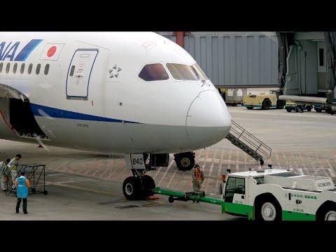 [4K] ANA 787 Business Class Taipei Songshan - Tokyo Haneda | Flight Report
