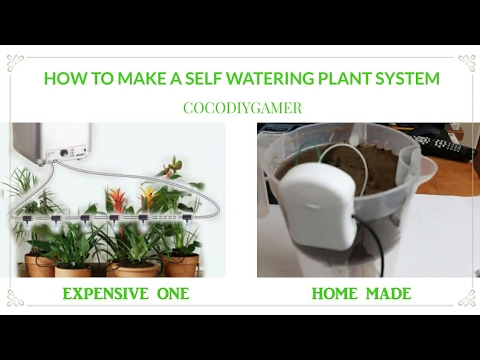 Download How to make a self watering plant system