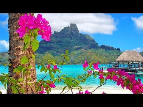 South Pacific Cruise H.A.L. Westerdam