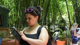 Yves Saint Laurent Garden (Le Jardin Majorelle) -  DSC 0817