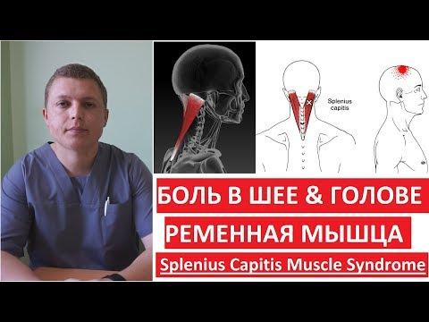 Как лечить мышцы шеи
