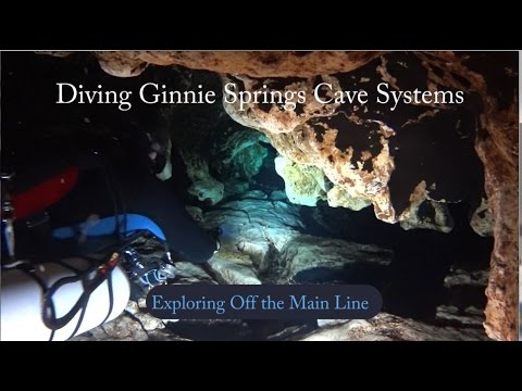 Cave Diving - Ginnie Springs Outdoors, Exploring Off the Main Line
