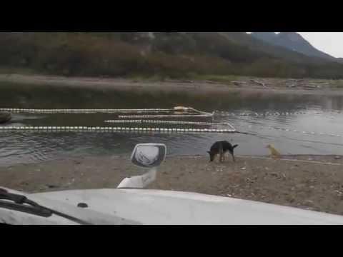 методы ловли лосося
