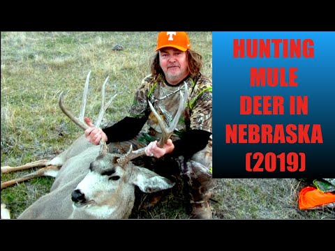 BEST HUNT ON YOUTUBE - HUNTING MULE DEER IN NEBRASKA BAG R BUCK HYDROGRAPHICS