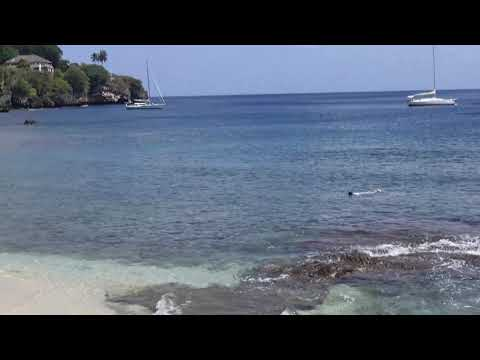 Flying Fish Cove snorkelling